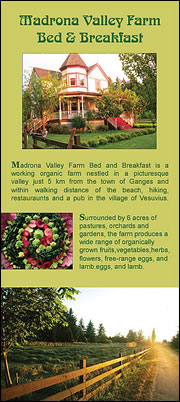 Madrona Valley Bed & Breakfast - Brochure front